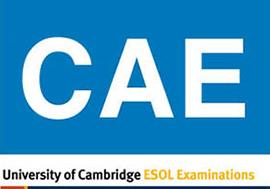 Akademija Oxford - CEA