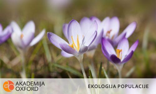 Prevajanje besedil s področja ekologije populacije