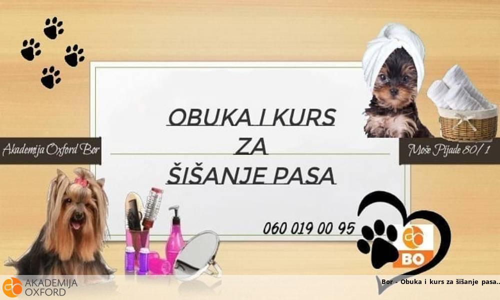 Bor - Obuka i kurs za šišanje pasa